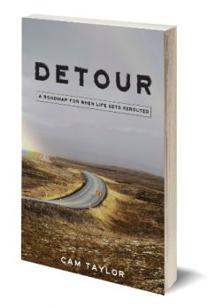 Detour - book cover