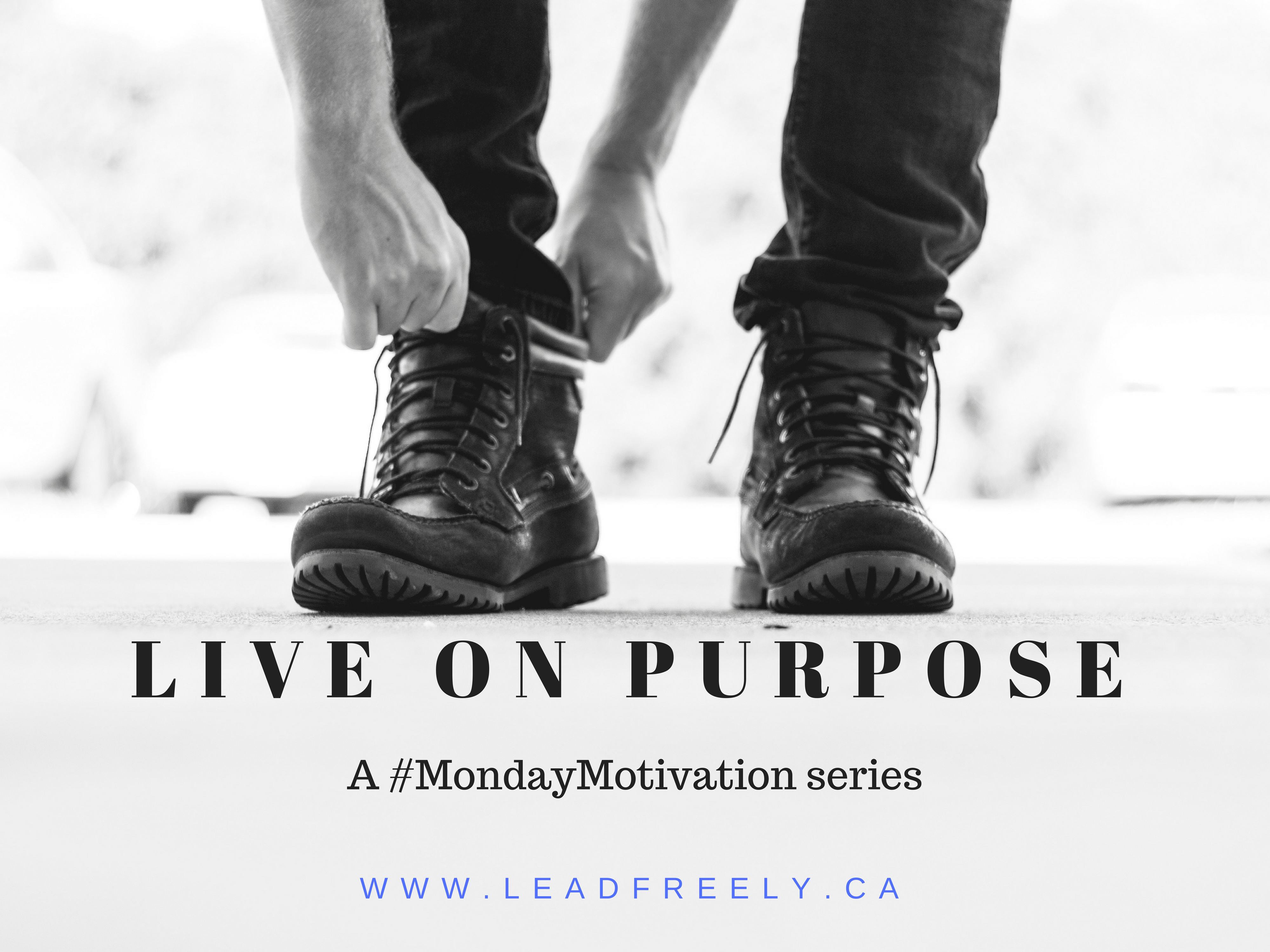 live on purpose - promo.png
